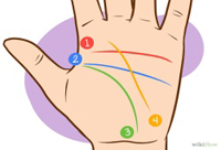 Palm Reading Guide With Pictures