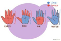 Overview of Palmistry Hand Shapes